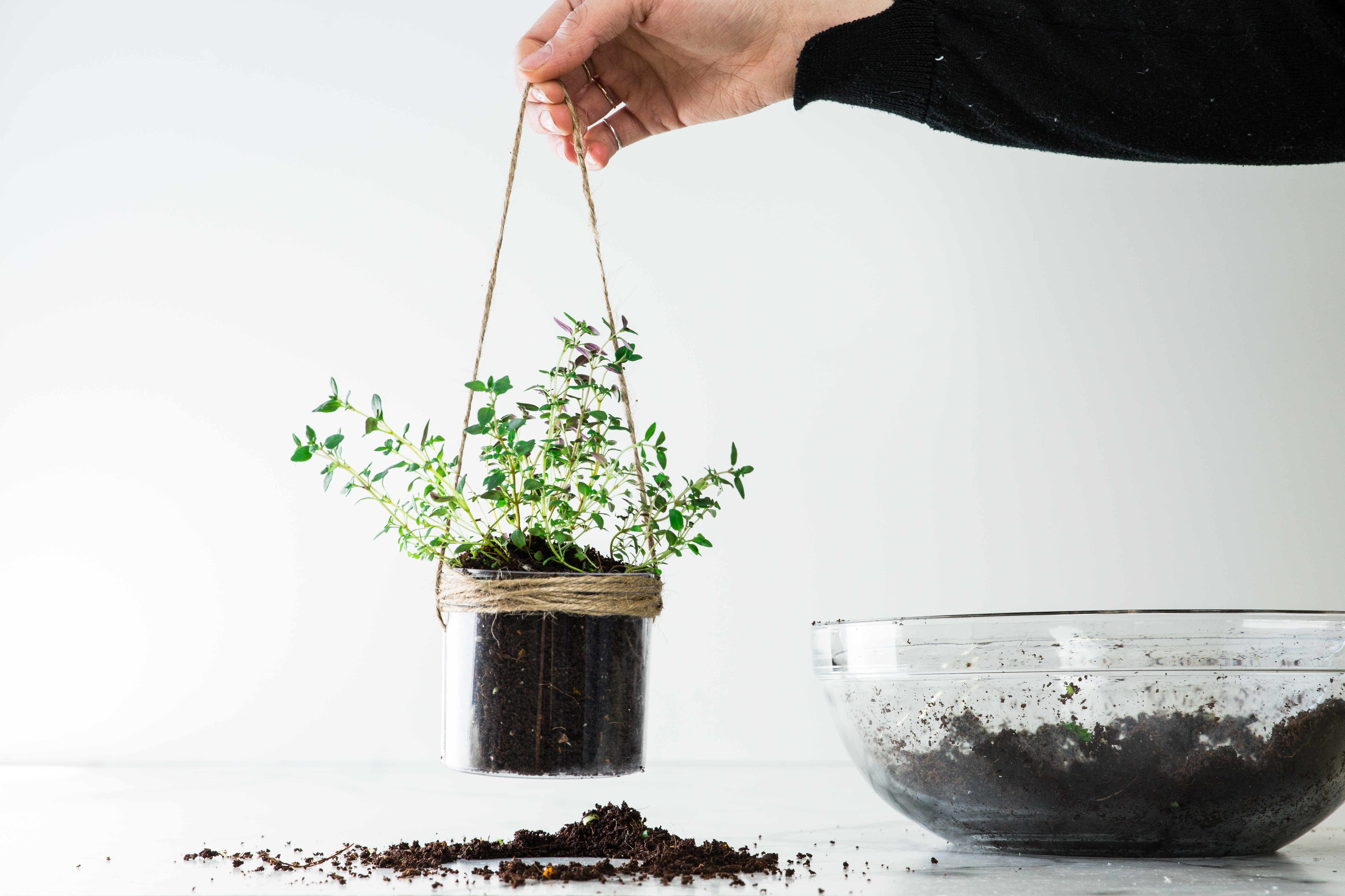 upcycle your meal kit packaging - terrarium